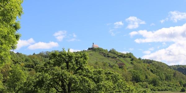 Der Kapellenberg vom Neckartal aus gesehen