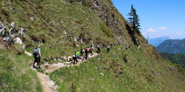From Bocca Saval to Nino Pernici mountain hut