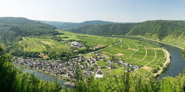 Briedener Schweiz
