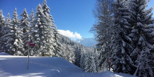 Winterwandern auf dem Kristberg