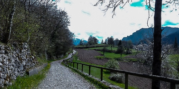 The road leading to Canale