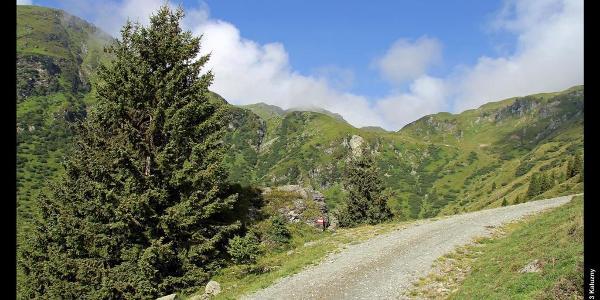 Reschekogel (in Wolken) vom Pinzgauer Spaziergang zwischen Bürglhütte und Murnauer Scharte