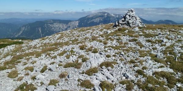 Auf der Scheibwaldhöhe: Blick zum Schneeberg