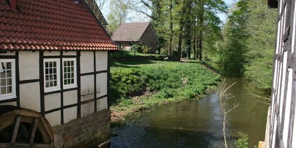 Dorfmühlen in Ladbergen