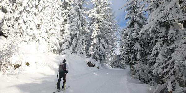 Gewalzte Strecke zur Chamer Hütte