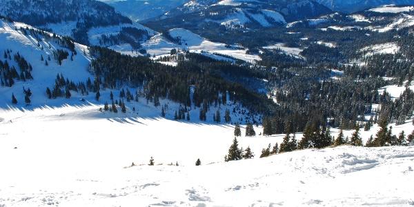 Blick vom Gipfel des Hohen Waxeneggs in den Ahorngraben – die Veitsch rechts im Hintergrund