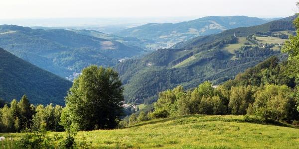 Ausblick vom Muckenkogel