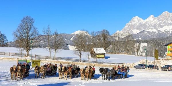 Pferdeschlitten am Startplatz in Rohrmoos-Zentrum
