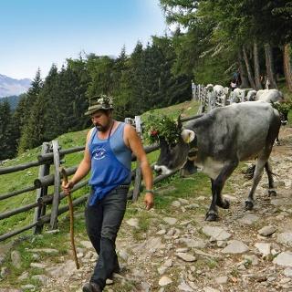 Rifugio Leiter - Rifugio del Valico - Gamplweg - Vellau