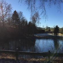 Teich bei Remblinghausen