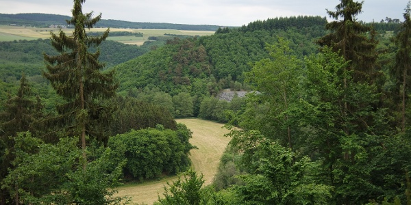 Aussichtspunkt ins Hahnenbachtal