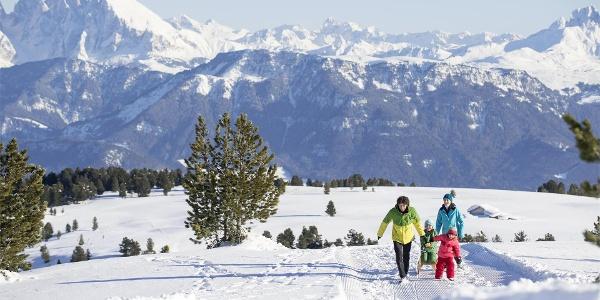 slittino per famiglie sull' Alpe di Villandro