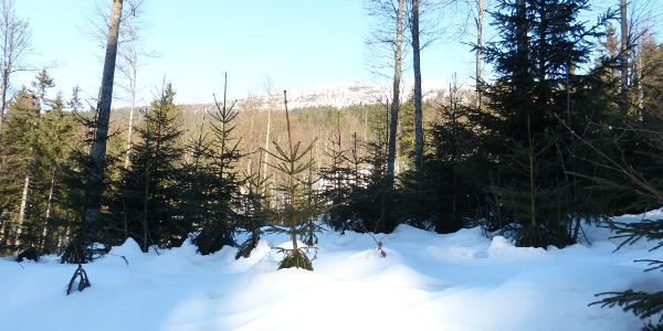 Blick vom Parkplatz auf den Bergrücken