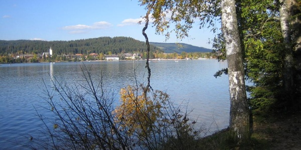 Titisee im Herbst