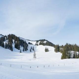Blick von der Ober-Älple Richtung Ochsenkopf, ab da geht es steil den Berg rauf.