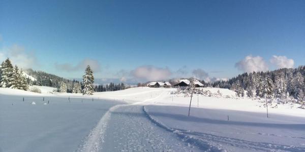 Winterwandern Hochhäderich