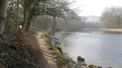 Uferpfad entlang der Reuss