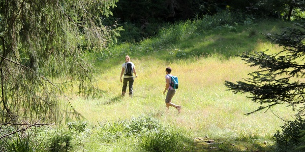 Trekking-Camp Kniebis