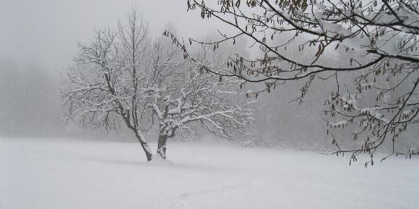 Tiefster Winter erschwert die Orientierung.