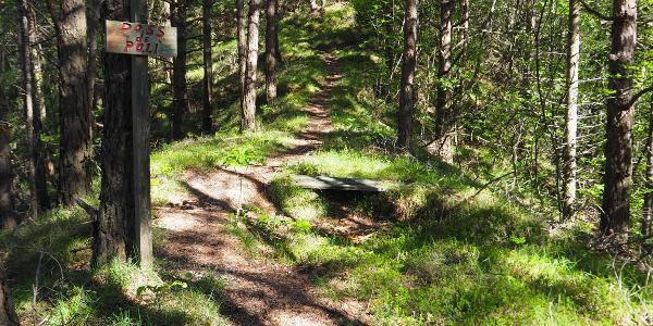 Durch den Wald zur Bochet de Zori