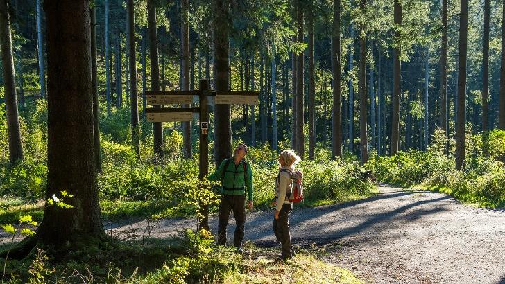 Wandern auf den Golddorf-Routen