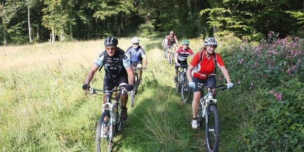 Mountainbike-Tour durch den Solling