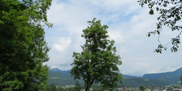 Blick über die Ramsau bei Bad Goisern