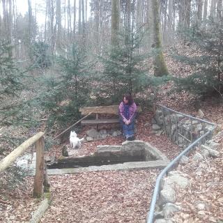 Die Kammel Quelle