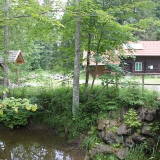 Blick auf das Waldhaus am Naturpfad Senkele