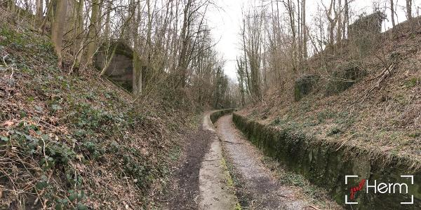 The old traintrack-gully