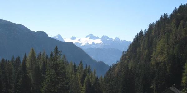 Blick zum Dachstein, Standort Vordersandlingalm