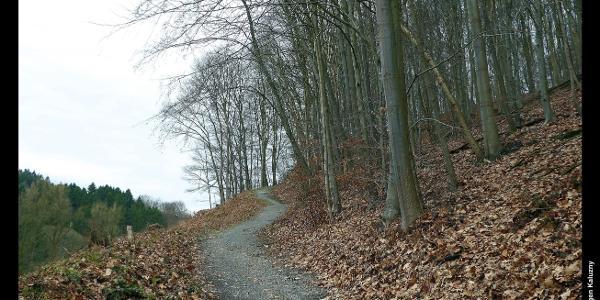 Wanderweg oberhalb der Brücke über die Wupper in Müngsten