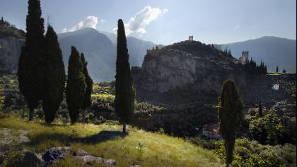 Laghel, mitten im Olivenhain von Arco