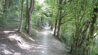 Radweg entlang der Altmühl