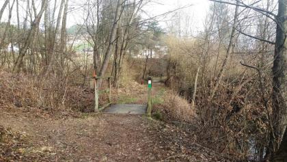 Idyllischer Weg nähe Kollegger-Teich