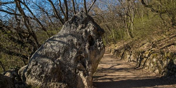 Az Oroszlán-szikla tavasszal