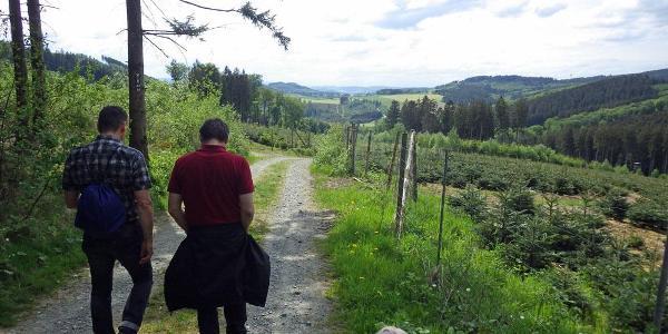Der Abstieg ins Tal.