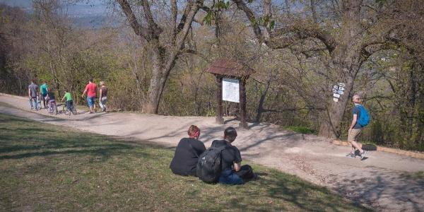 A Normafán több jelzett turistaút is áthalad