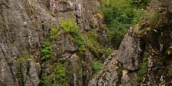 Úrkút,Urkarst von Csárda-hegy