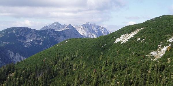 Blick zum Sengsengebirge ©  Mitterhuber