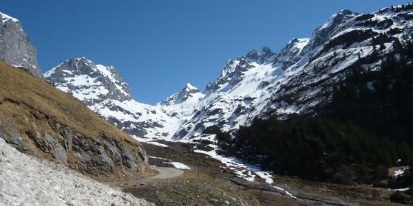 Wendenalp - Blick Richtung Wendengletscher