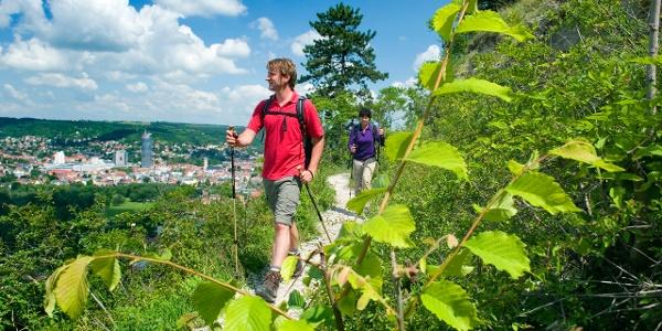 Der Saale-Horizontale mit gutem Blick auf Jena