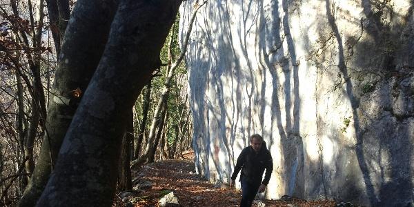 The trail to Bocca di Tovo