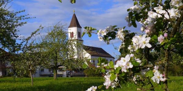 Frühling in Lienheim