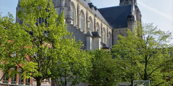 Kathedrale unserer lieben frau antwerpen
