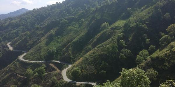 Abfahrt Richtung Bagaladi