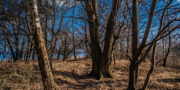 Stille und Ruhe auf der Halbinsel Pulitz