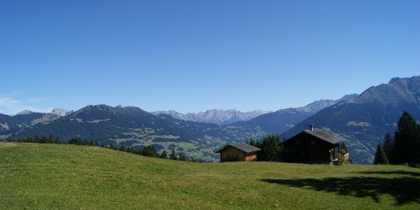 Maisässlandschaft Matschwitz