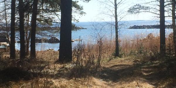 Dragösviken, utsikt från startpunkten på Stråsjöleden