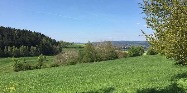 Blick Richtung Schleusingen